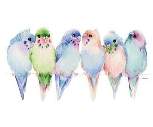 bird, art, and animal image