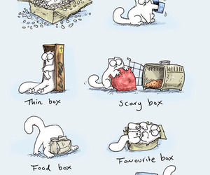 cat, simon's cat, and box image