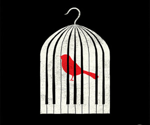 bird, piano, and cage image