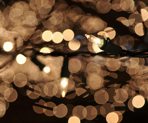 bokeh and photography image