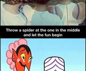 funny, evil, and spider image
