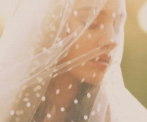 wedding and veil image