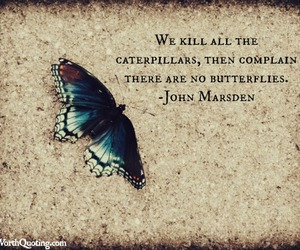 butterfly, caterpillar, and quote image
