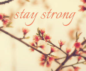 flowers and stay strong image