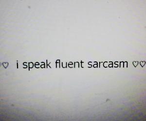 language, sarcasm, and i speak fluent sarcasm image