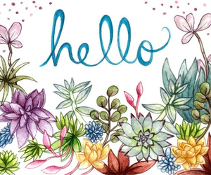flowers and hello image
