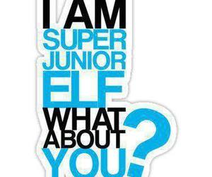 elf, SJ, and suju image
