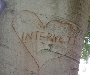 internet, love, and tree image