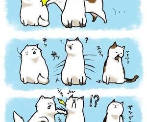 cute cat, trolling cat, and (c) by aobe image