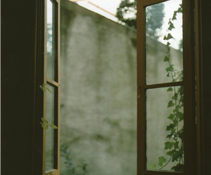 window and nature image