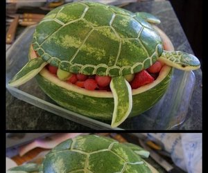 food and turtle image