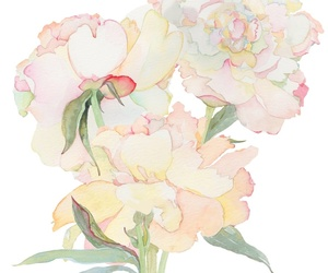 aquarell, floral, and flowers image