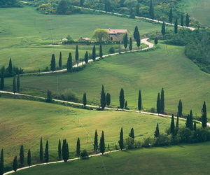 green, italy, and photography image