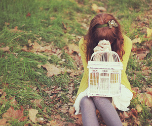 girl, cage, and autumn image
