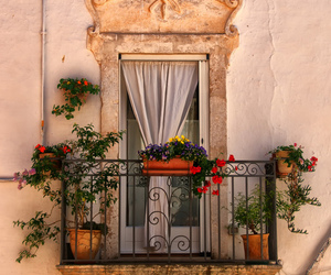 flowers and balcony image