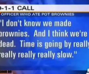 funny, brownies, and high image