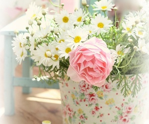 flowers, pastel, and shabby chic image