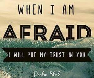 afraid, quote, and trust image