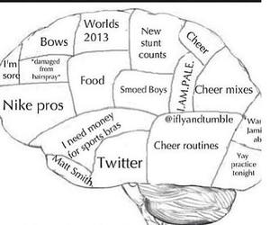 bows, brain, and cheer image