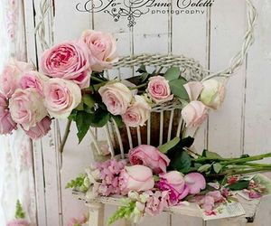 roses, shabby chic, and vintage image
