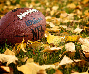 football, fall, and NFL image