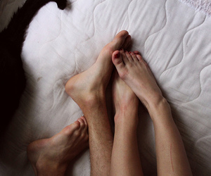 cat, feet, and casais image