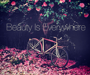 weheartit and love image