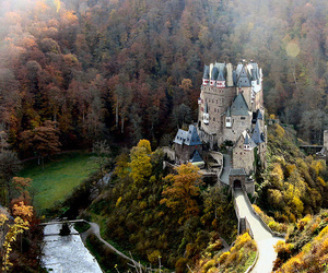 castle, forest, and nature image