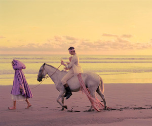 horse, beach, and prince image