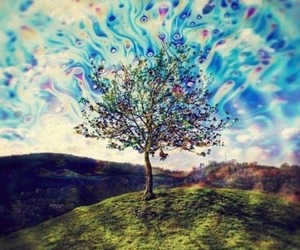 tree, colors, and lsd image