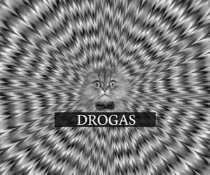 cat, drogas, and drugs image