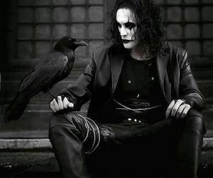 the crow and black image