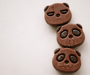 panda, chocolate, and food image