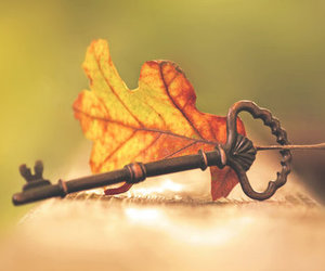 key, autumn, and leaves image
