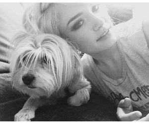 dog, girl, and atleeeey image
