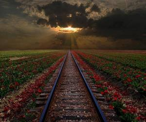 sunset, photo beautiful, and tracks image