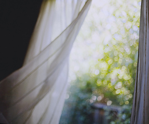 window, wind, and photography image
