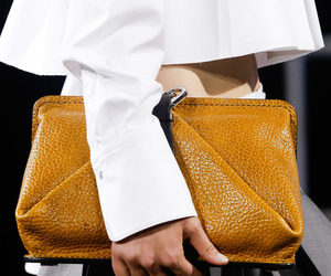 alexander wang and bag image