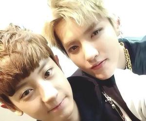 exo, kris, and chanyeol image