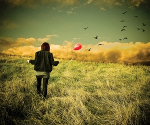 balloon, birds, and field image