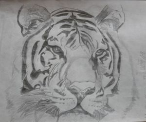 amazing, cool, and drawing image