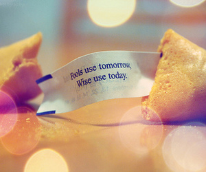 fools, fortune cookie, and fortune image