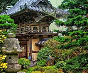 garden and japanese image