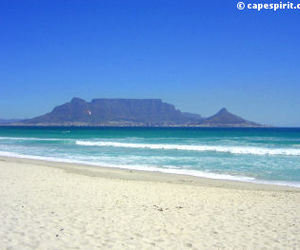 beache and beautiful city-cape town image