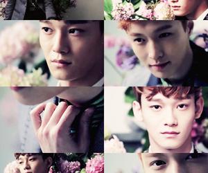 Chen, zhang yixing, and kim jongdae image