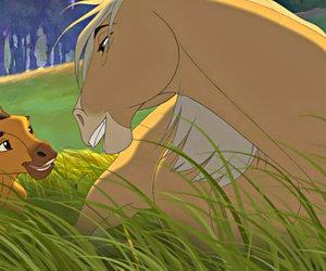 horse, horses, and spirit image