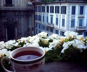 tea, flowers, and city image