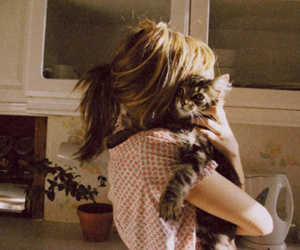 animal, vintage, and cat image