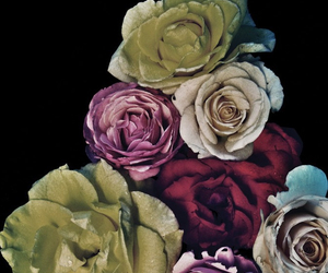 roses and deftones image