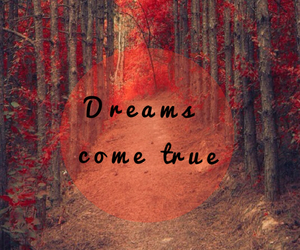 Dream, dreamer, and forest image